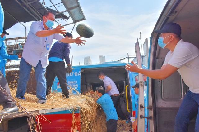 Hàng chục tấn dưa hấu được giải cứu trong mùa dịch Corona - 2