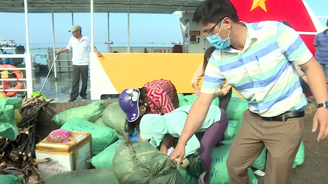 Quảng Ngãi: Ngăn chặn tỏi từ đất liền ra đảo khoác áo tỏi Lý Sơn - 1