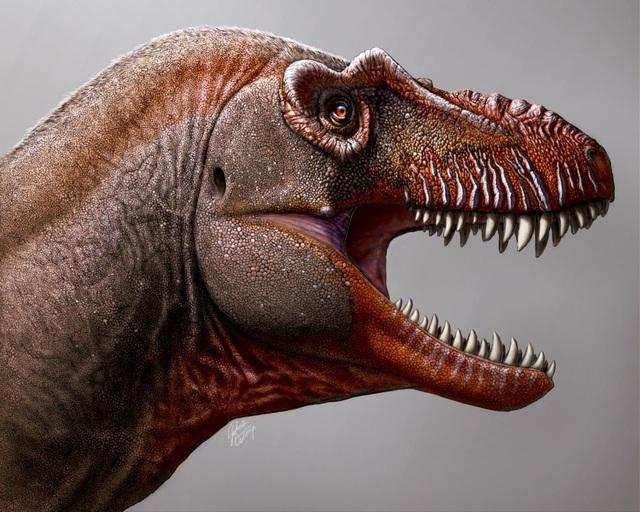"""Phát hiện loài """"khủng long thần chết"""" anh em họ của T. rex ở Canada - 1"""