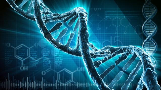 Thêm một bằng chứng quan trọng về khả năng gây ung thư của thuốc lá điện tử - 2
