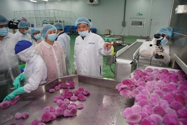 SCB đồng hành cùng nông dân Việt giữa mùa dịch virus corona - 1