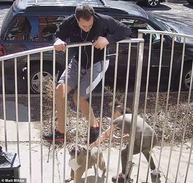 Clip: Đang chạy thể dục thì bị chó đuổi, người đàn ông bất đắc dĩ trèo rào - 1