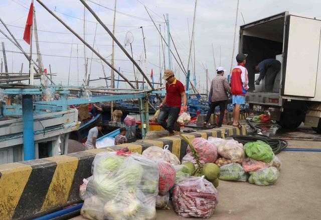 Phú Yên: Hàng trăm tàu cá của ngư dân háo hức vươn khơi đầu năm - 1