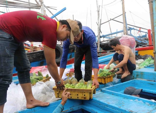 Phú Yên: Hàng trăm tàu cá của ngư dân háo hức vươn khơi đầu năm - 3