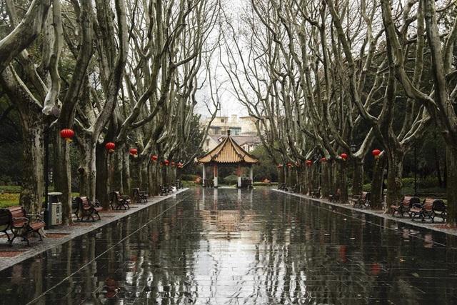 Bộ ảnh thành phố ma của nhiếp ảnh gia người Mỹ mắc kẹt tại Trung Quốc - 2