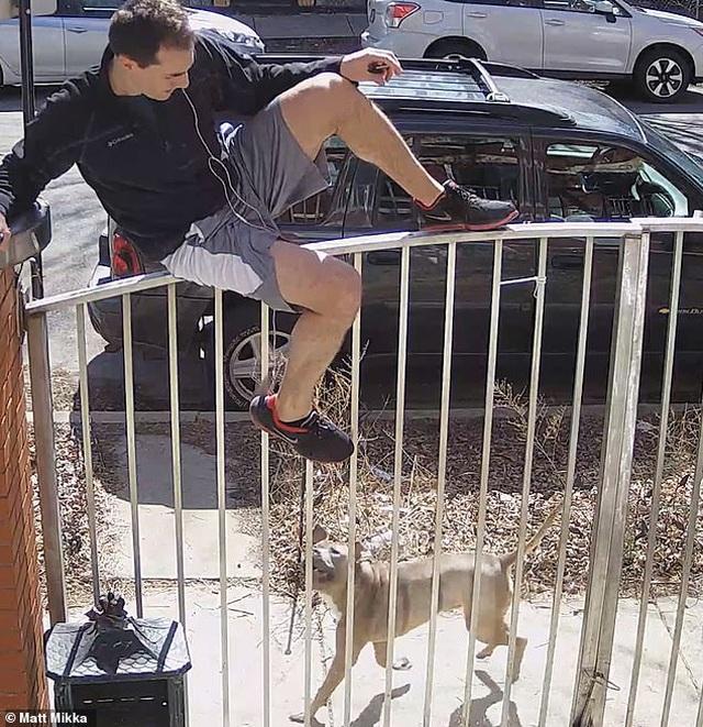 Clip: Đang chạy thể dục thì bị chó đuổi, người đàn ông bất đắc dĩ trèo rào - 3