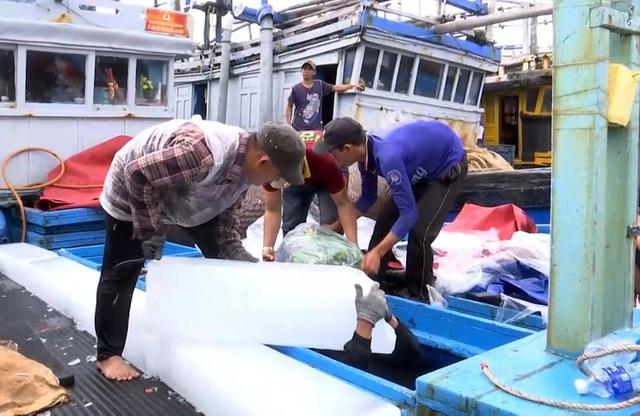 Phú Yên: Hàng trăm tàu cá của ngư dân háo hức vươn khơi đầu năm - 5