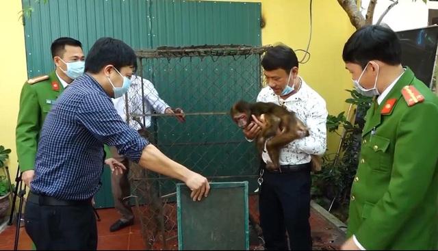 Tự nguyện giao nộp khỉ quý hiếm để thả về tự nhiên - 1