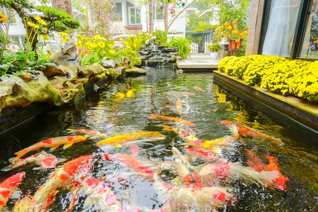 Cặp vợ chồng trẻ ở Hưng Yên bỏ phố, về quê làm biệt thự vườn đẹp hiếm có - 10