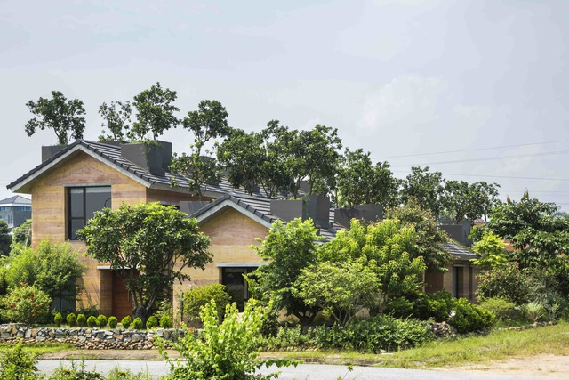 Biệt thự ở Hà Nội gây ngỡ ngàng khi trồng cả vườn cây ăn quả trên mái nhà - 2