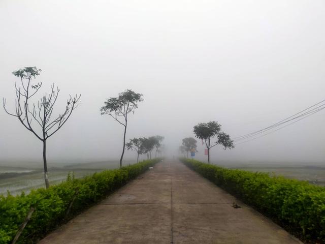Cảnh báo tai nạn giao thông do sương mù dày đặc kéo dài - 2