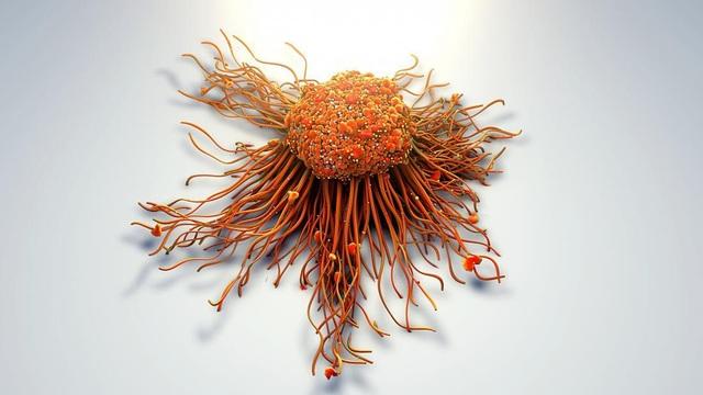 Phát hiện vitamin D có thể chặn đứng vũ khí hàng đầu của tế bào ung thư - 2