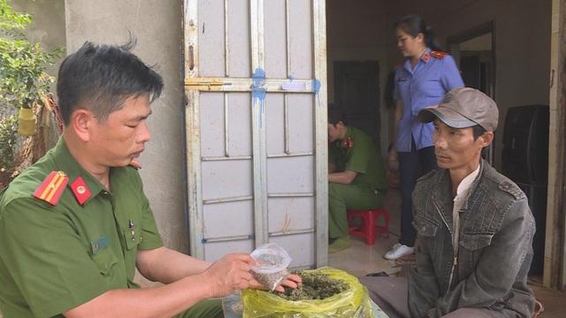 Người đàn ông trồng cần sa trên rẫy cà phê, tích mìn tự chế trong nhà  - 2