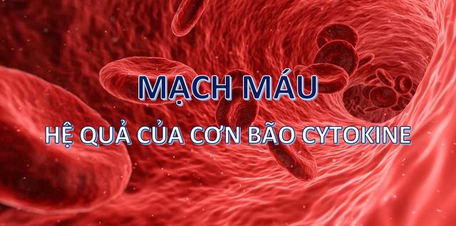 Virus corona mới tàn phá các bộ phận trên cơ thể như thế nào? - 6