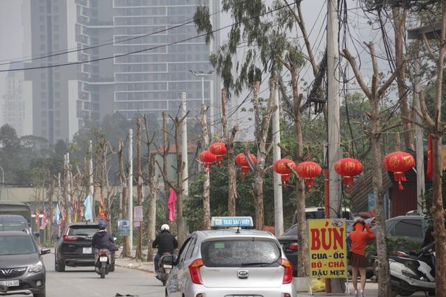 Hà Nội: Hàng trăm cây xanh chết khô trên con đường mới mở - 12