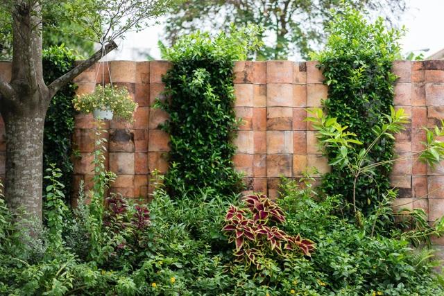 Vẻ đẹp không ngờ của ngôi nhà tổ chim tràn ngập cây xanh ở Sài Gòn - 3