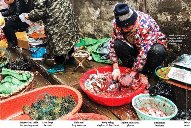 Người Trung Quốc vẫn chưa từ bỏ thói quen nguy hiểm - Ăn động vật hoang dã - 2