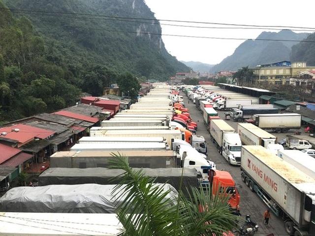 """Hàng trăm xe trái cây tươi vẫn """"bất động ở cửa khẩu, chờ sang Trung Quốc - 1"""