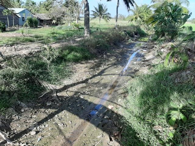 Thiếu nước ngọt, dân đánh liều bơm nước nhiễm mặn… cứu lúa - 5