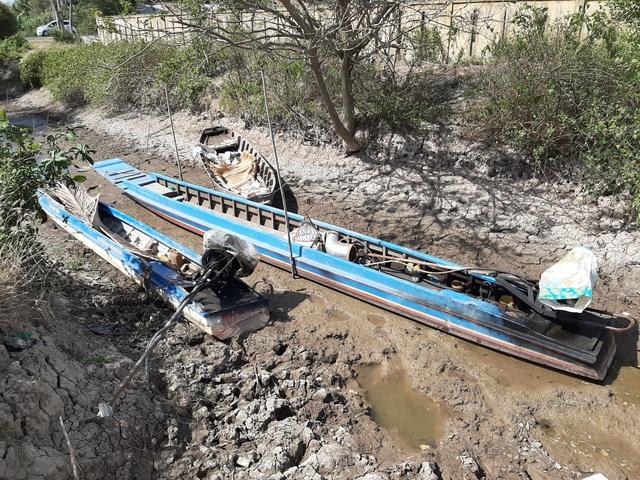 Thiếu nước ngọt, dân đánh liều bơm nước nhiễm mặn… cứu lúa - 9