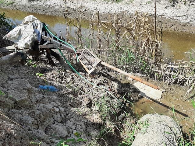 Thiếu nước ngọt, dân đánh liều bơm nước nhiễm mặn… cứu lúa - 10