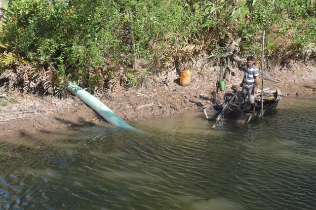 Thiếu nước ngọt, dân đánh liều bơm nước nhiễm mặn… cứu lúa - 4