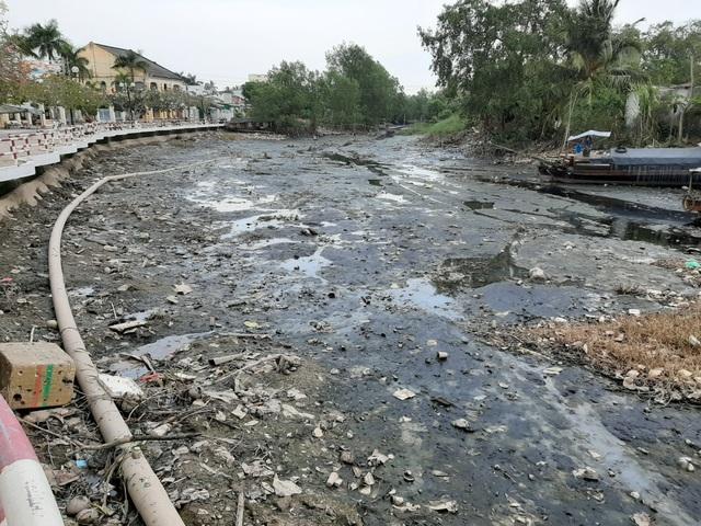Thiếu nước ngọt, dân đánh liều bơm nước nhiễm mặn… cứu lúa - 7