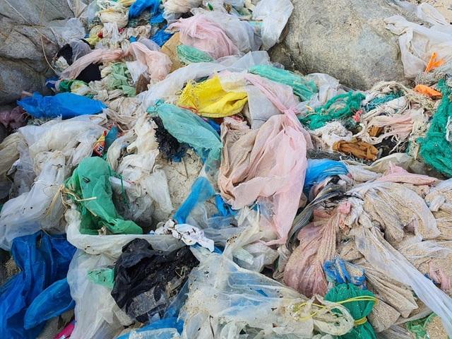 Hàng trăm người thu gom 30 tấn rác, giải cứu bãi biển xinh đẹp - 3