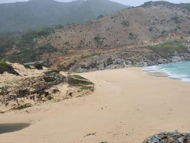 Hàng trăm người thu gom 30 tấn rác, giải cứu bãi biển xinh đẹp - 12