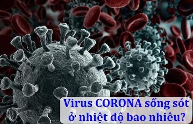 Virus corona (Covid-19) sống sót trong nhiệt độ bao nhiêu? - 1