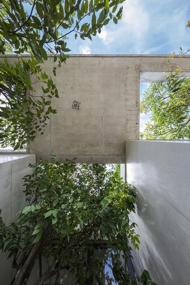 Biệt thự ở Sài Gòn gây ngỡ ngàng bởi thiết kế cây mọc xuyên mái nhà - 8