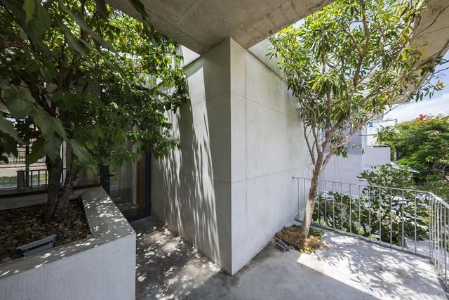 Biệt thự ở Sài Gòn gây ngỡ ngàng bởi thiết kế cây mọc xuyên mái nhà - 3