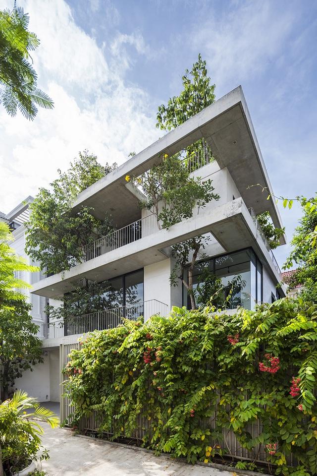 Biệt thự ở Sài Gòn gây ngỡ ngàng bởi thiết kế cây mọc xuyên mái nhà - 11