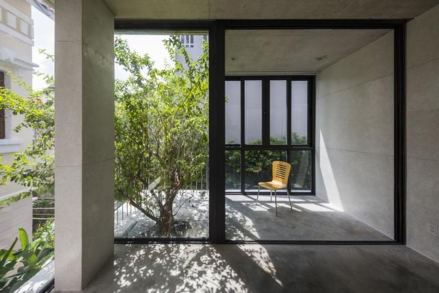 Biệt thự ở Sài Gòn gây ngỡ ngàng bởi thiết kế cây mọc xuyên mái nhà - 2