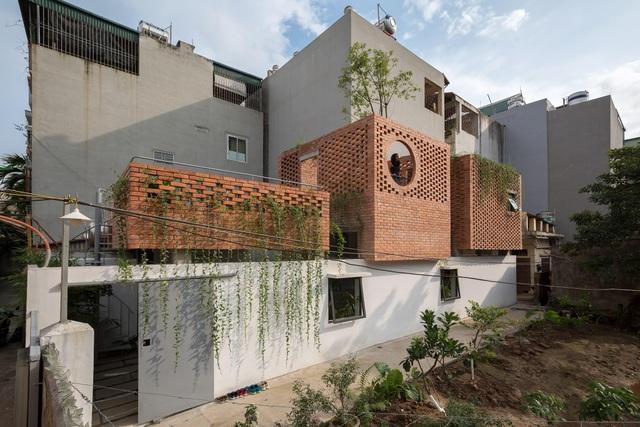 Ngôi nhà gạch trần 800 triệu ở Hà Nội gây sốt bởi vẻ đẹp độc, lạ - 1