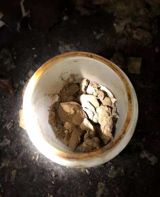 Tìm thấy nhiều lọ đựng lưỡi người trong căn nhà ở Florida - 2