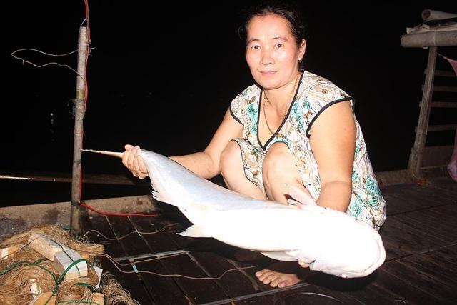 Cuộc săn loài cá nhìn là mê, ăn là phê của ngư dân miền Tây - 7
