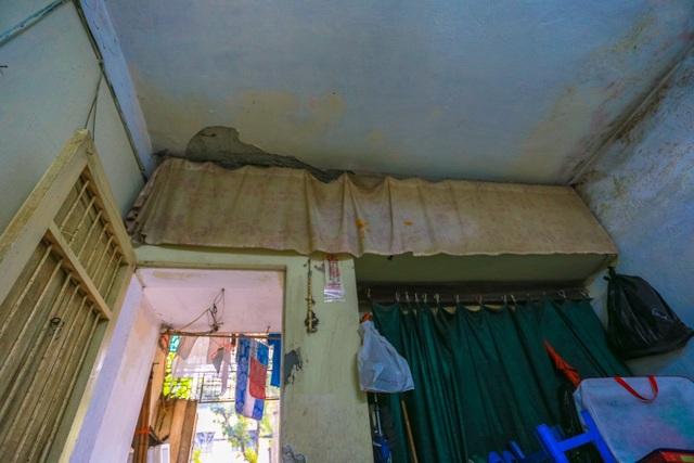 Kỳ dị cây mọc giữa nhà trong khu tập thể cũ độc nhất Hà Nội - 16