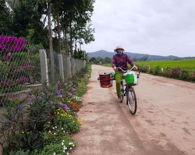 """Cả làng """"xin"""" hoa về trồng, đường quê Bình Định đẹp như tranh họa - 9"""