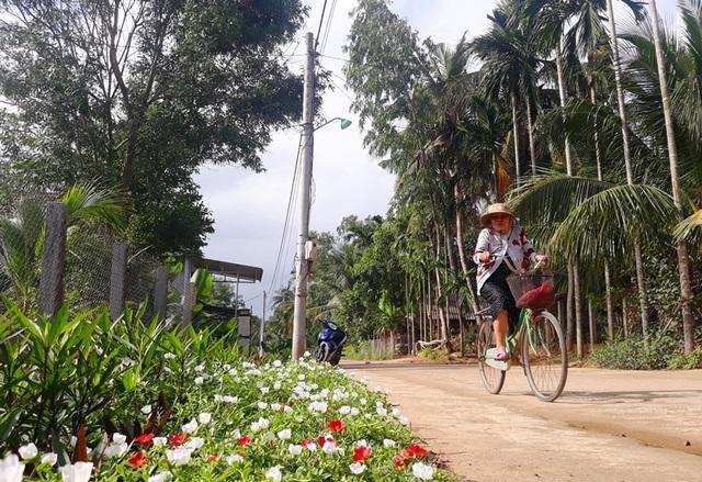 """Cả làng """"xin"""" hoa về trồng, đường quê Bình Định đẹp như tranh họa - 4"""