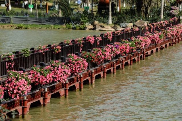 Cận cảnh những cây cầu đẹp lung linh tại thành phố xanh ngay gần Hà Nội - 7