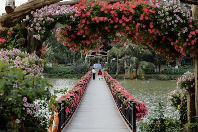 Cận cảnh những cây cầu đẹp lung linh tại thành phố xanh ngay gần Hà Nội - 6