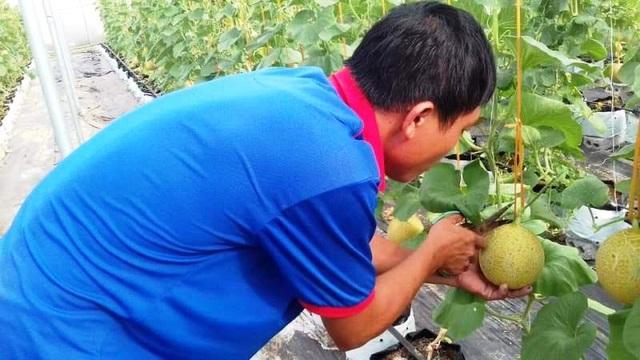 Nghệ An: Tạo việc làm và thu nhập từ đào tạo nghề nông thôn - 3