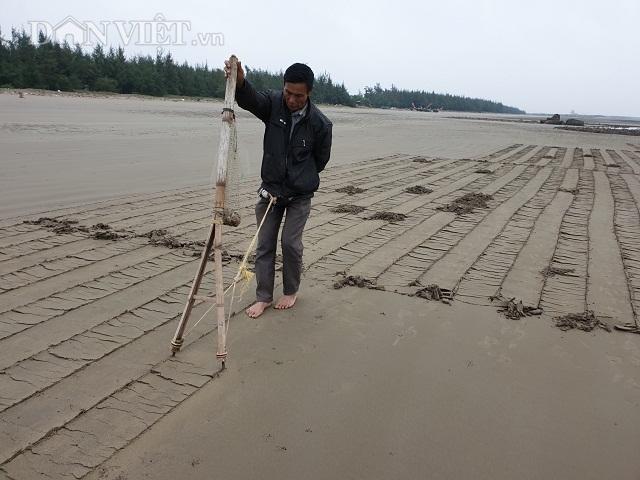 Nghề độc, lạ ở Nam Định: Đi cày trên biển bắt ngao to bự - 1