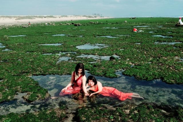 Vẻ đẹp mê hoặc lòng người của cánh đồng rong biển - 4