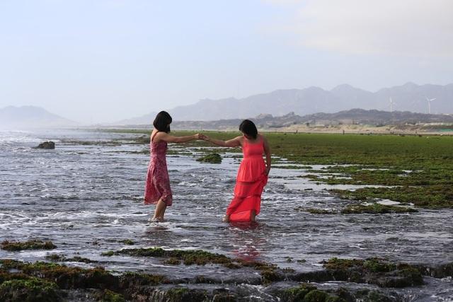 Vẻ đẹp mê hoặc lòng người của cánh đồng rong biển - 9