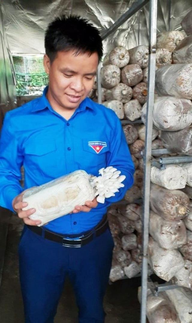 Nghệ An: Mô hình trồng nấm mang lại hiệu quả kinh tế của chàng kỹ sư trẻ - 5