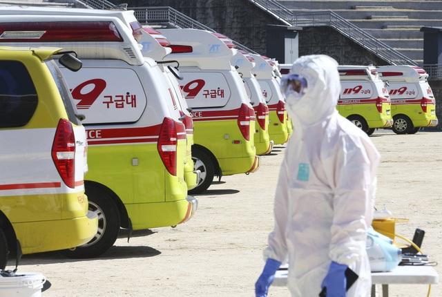 Hàn Quốc: Thêm 169 người nhiễm virus Covid-19, tổng cộng 1.146 ca - 1
