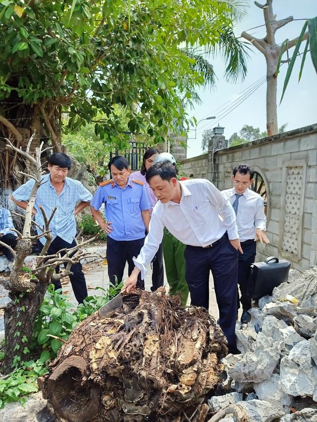 Vụ chặt cây trên đất đã mua suýt ngồi tù: Lại trả hồ sơ điều tra bổ sung! - 3
