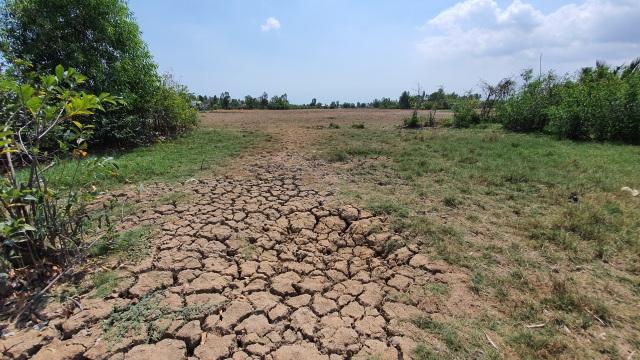 Cấp tốc đưa nước sạch cứu 8000 hộ dân bị xâm nhập mặn - 1